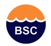 Barnes Swimming Club logo