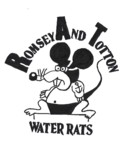 Romsey and Totton Swimming Club